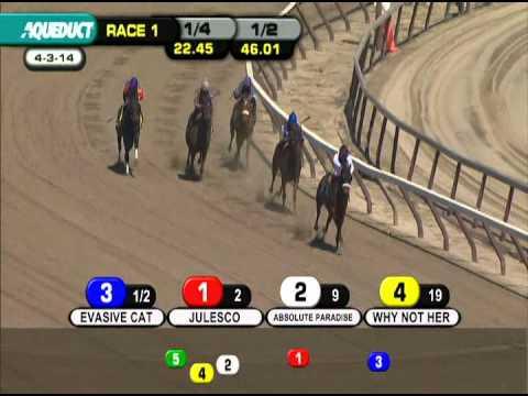 Aqueduct Racetrack Race 1 04/03/2014