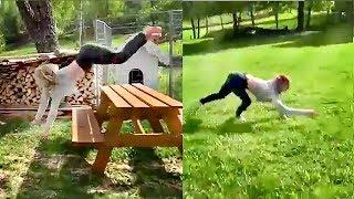 Part 1: Girl running like a Dog / The Human Dog Run / Девушка-собака / Doggirl