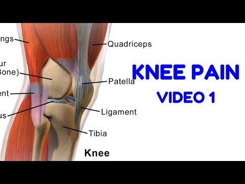 Knee Pain rehab 1 - TERMINAL KNEE EXTENSIONS
