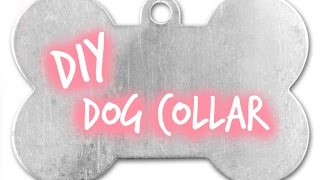 How To Make An Easy Quick Release Dog Collar