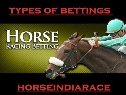 how to do horse betting in india