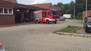 Ast stürzt auf Telefonleitung / Feuerwehr Trittau fällt Baum