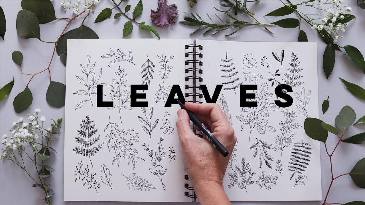 How To Draw Leaves And Botanicals Relaxing Journaling Beginner Youtube