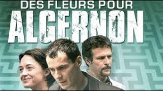 Des Fleurs pour Algernon - Film Complet HD