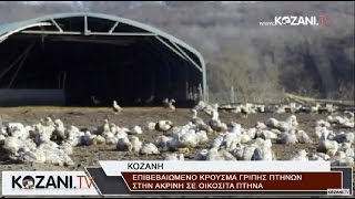 Κρούσμα γρίπης πτηνών στην Ακρινή Κοζάνης