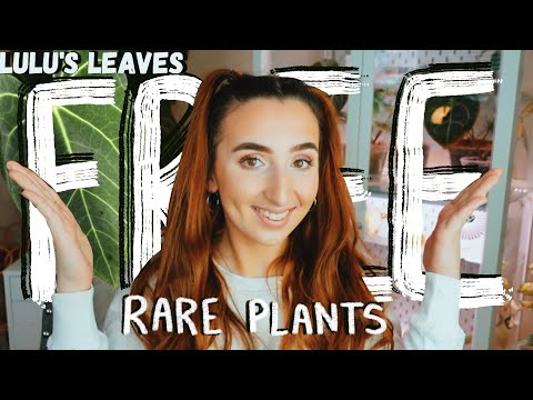How To Get FREE Rare House Plants!?