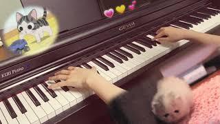 틱톡 고양이송 피아노 오르골 127K 조회수 学猫叫 아기고양이 치💕 Cat Song Piano Music Box ver. by KERI Piano 케리피아노