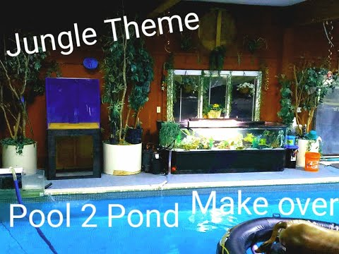 Jungle theme for the pond guy :) at Ohio Fish Rescue