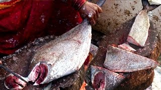 Amazing Big Black Pomfret Fish Cutting | Chanduva fish Cutting | Big Pomfret Fish Cutting HD