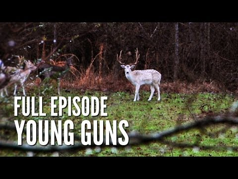 Fallow Deer Hunting & Hunter Training Course -