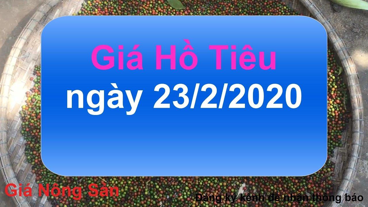 Giá Hồ Tiêu hôm nay ngày 23 tháng 2 năm 2020, giá nông sản hôm nay