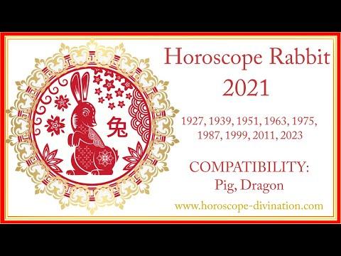 兔 Chinese Horoscope 2021 Rabbit • Chinese New Year 2021 • Year Of The White Metal Ox 牛