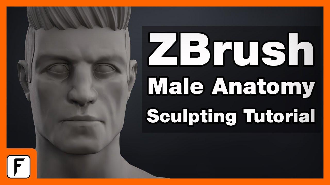 Download ZBrush Male Anatomy Sculpting Tutorial + Free Bonus Content