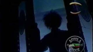 caifanes - sera por eso (video)