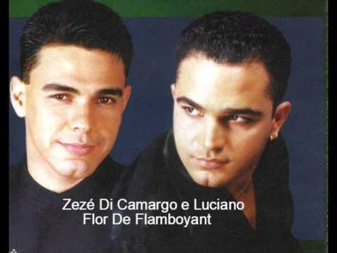 Zezé Di Camargo e Luciano - Flor De Flamboyant (1998)