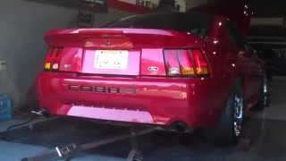 Mustang Owners NJ-North Jersey, South Jersey, Jersey Shore