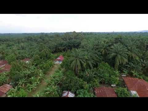 Panei Raya, Aerial Cinematography