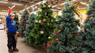 видео Как правильно выбрать живую или искусственную елку на Новый год?