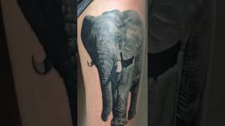 Video amazing elephant tattoo black and grey download MP3, 3GP, MP4, WEBM, AVI, FLV Juni 2018
