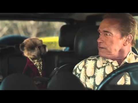 Compare the Meerkat - Advert 52