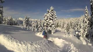 REV-XM Ski-Doo Summit Powder Ride with Dave Norona