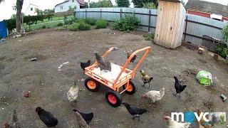 """...Тележка МУРАВЕЙ """"//Дегельминтизация животных!!!"""