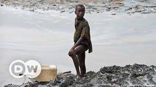 Nijer Deltası'na sızan petrolün kurbanı yerli halk - DW Türkçe