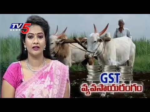 GST Effect On Agricultural Sector | Annapurna | TV5 News