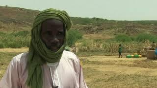 Encourager l'élevage durable au Niger