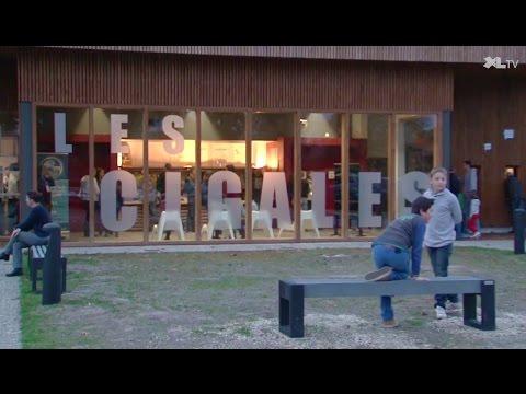 Les Cigales à Luxey, une nouvelle offre culturelle dans les Landes