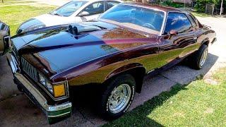 1977 Pontiac LeMans For Sale ?