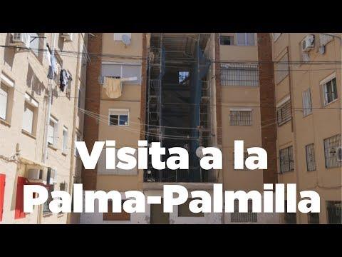 Visita a la Palma-Palmilla