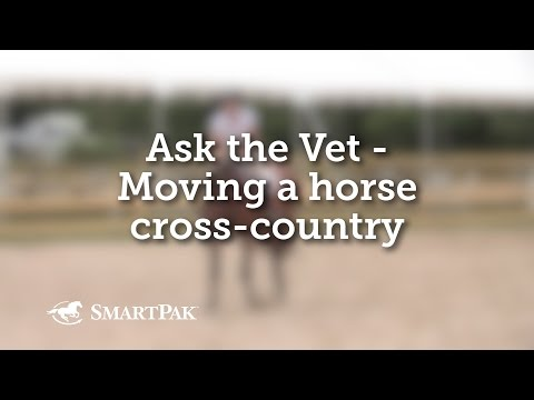 Ask the Vet - Moving a horse cross-country