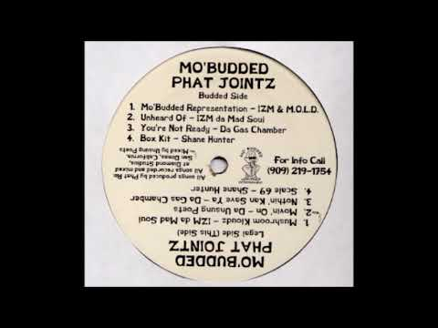 Various – Mo' Budded Phat Jointz