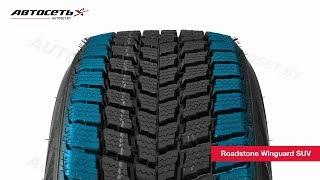 Обзор зимней шины Roadstone Winguard SUV ● Автосеть ●
