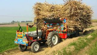 Tractor stunt by M Yousaf Zia in khan bela Pakistan 📱#03003966552
