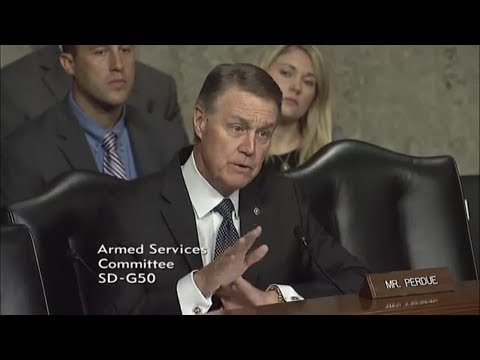 Senator David Perdue in Armed Services Committee
