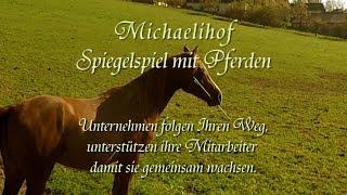 Michaelihof Spiegelspiel mit Pferden