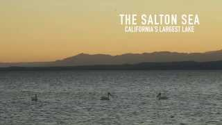 California's Sea: The Salton Sea