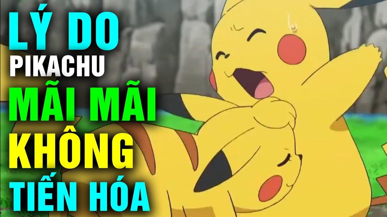 Lý Do Khiến Pikachu Mãi Mãi Không Chịu Tiến Hóa Nhưng Vẫn Rất Bá Đạo Trong Pokemon