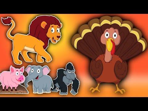 Die Tierlaute Song   Compilation für Kinder   Educational Video