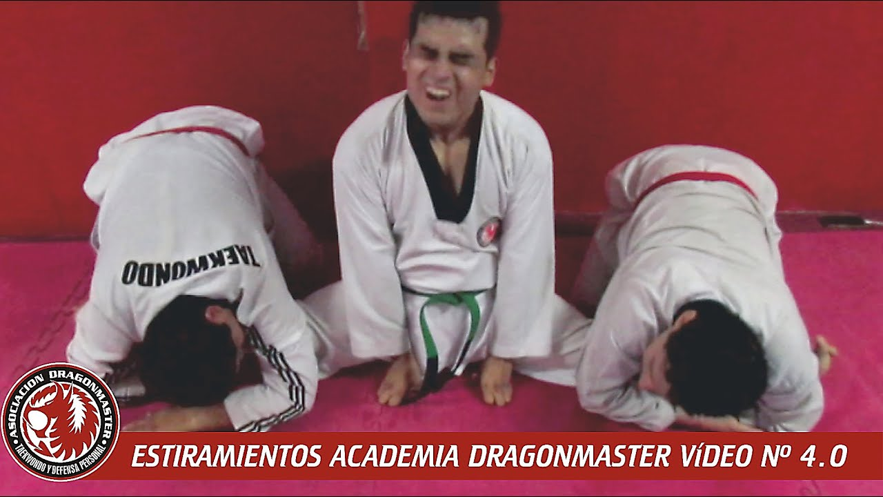 ESTIRAMIENTOS ACADEMIA DRAGONMASTER PARTE 4.0