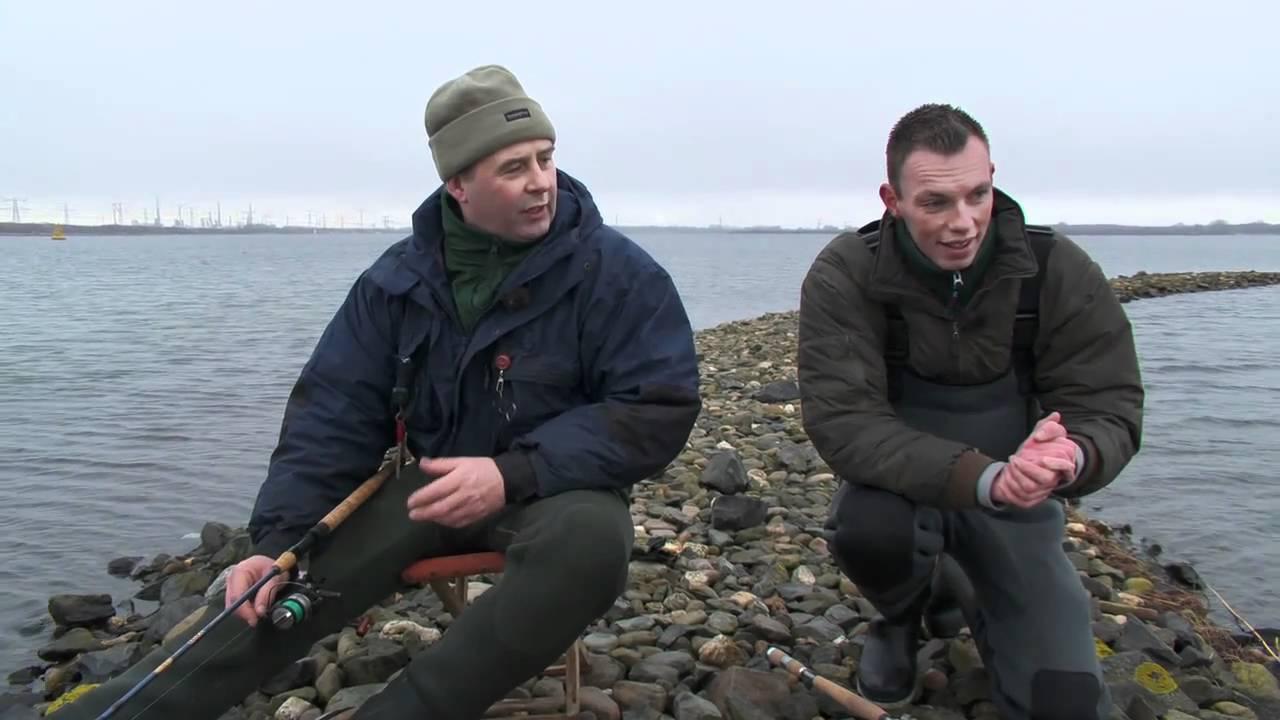 forel vissen nederland