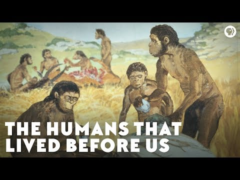 The Humans That Lived Before Us
