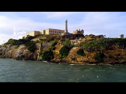 Alcatraz Plus Muir Woods and Sausalito Day Trip