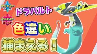 【ポケモン剣盾】ドラパルトの色違い出るまで孵化配信!【ポケモンソードシールド】