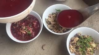 Tiết canh vịt nuôi thóc giải nhiệt mùa hè và pha bắt vịt thần thánh | miền bắc TV
