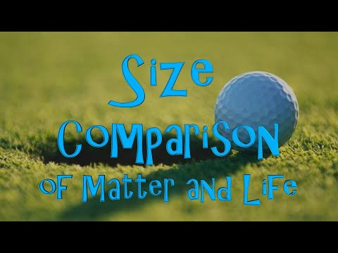 Size Comparison of Matter and Life (part 1 of 2)