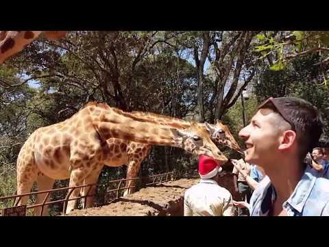 Giraffe - Hyena - Eagle (Kenya & Ethiopia) Efe Tanay