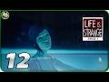 Life Is Strange. Эпизод 3: Теория Хаоса ➪ Серия #12 ➪Искупаемся, Хлоя?